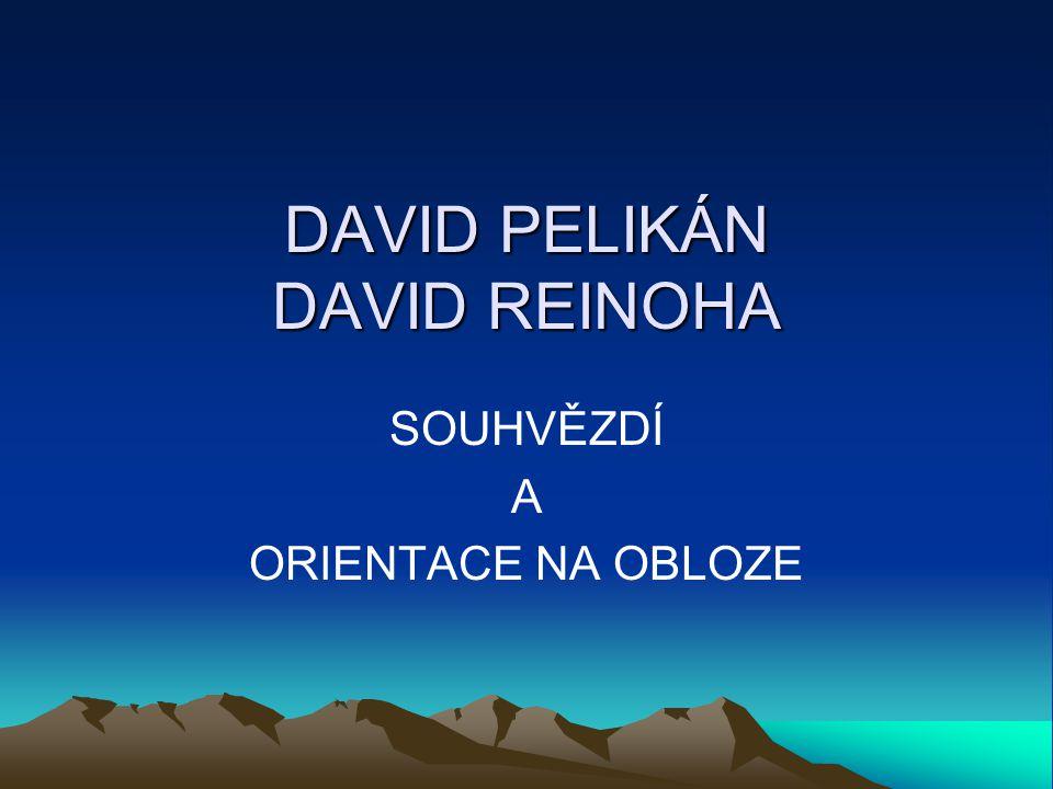 DAVID PELIKÁN DAVID REINOHA
