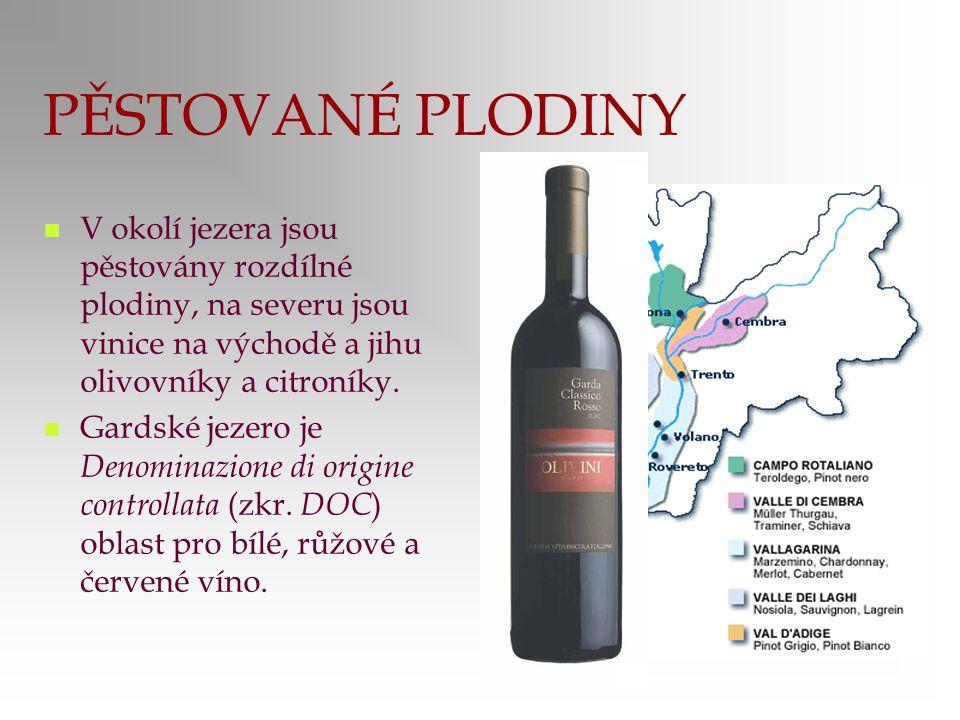PĚSTOVANÉ PLODINY V okolí jezera jsou pěstovány rozdílné plodiny, na severu jsou vinice na východě a jihu olivovníky a citroníky.