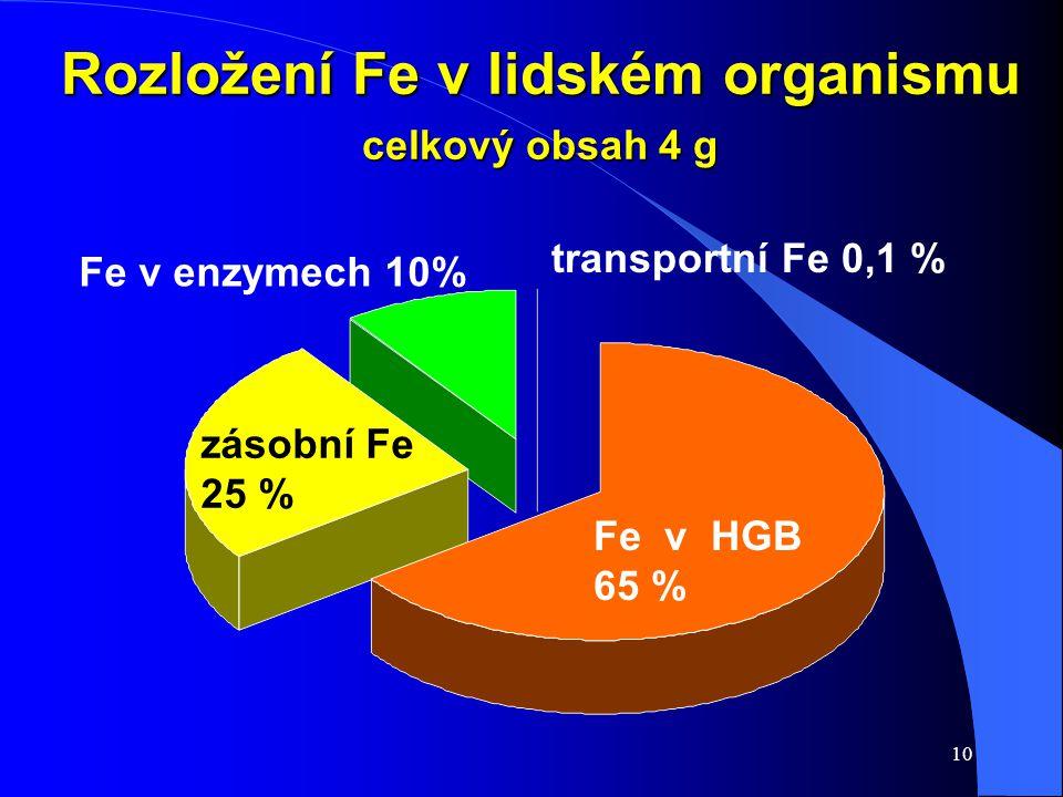 Rozložení Fe v lidském organismu celkový obsah 4 g