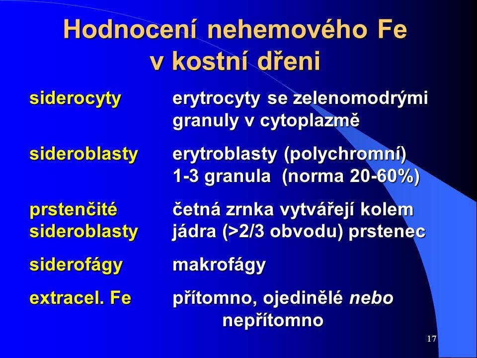 Hodnocení nehemového Fe v kostní dřeni