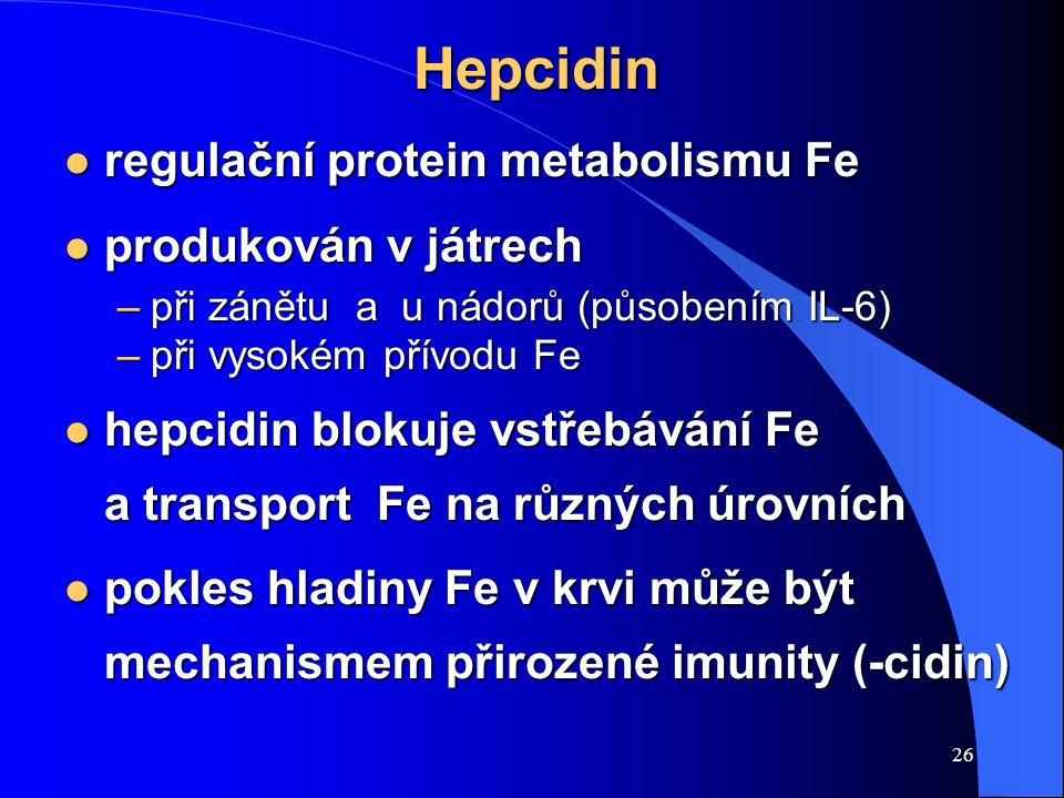 Hepcidin regulační protein metabolismu Fe produkován v játrech
