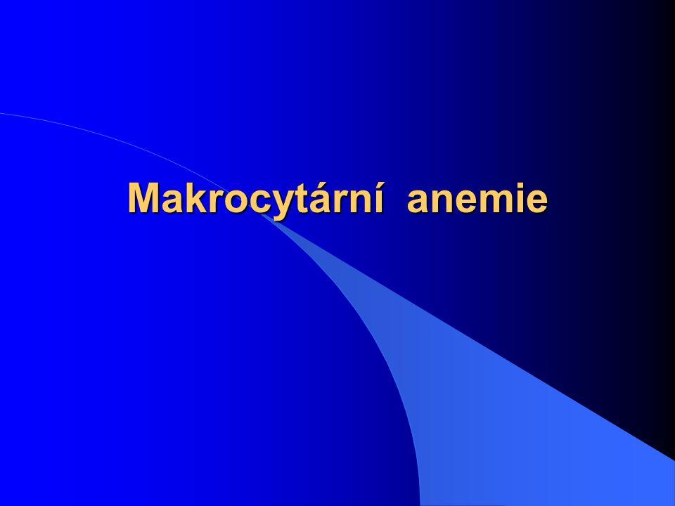 Makrocytární anemie