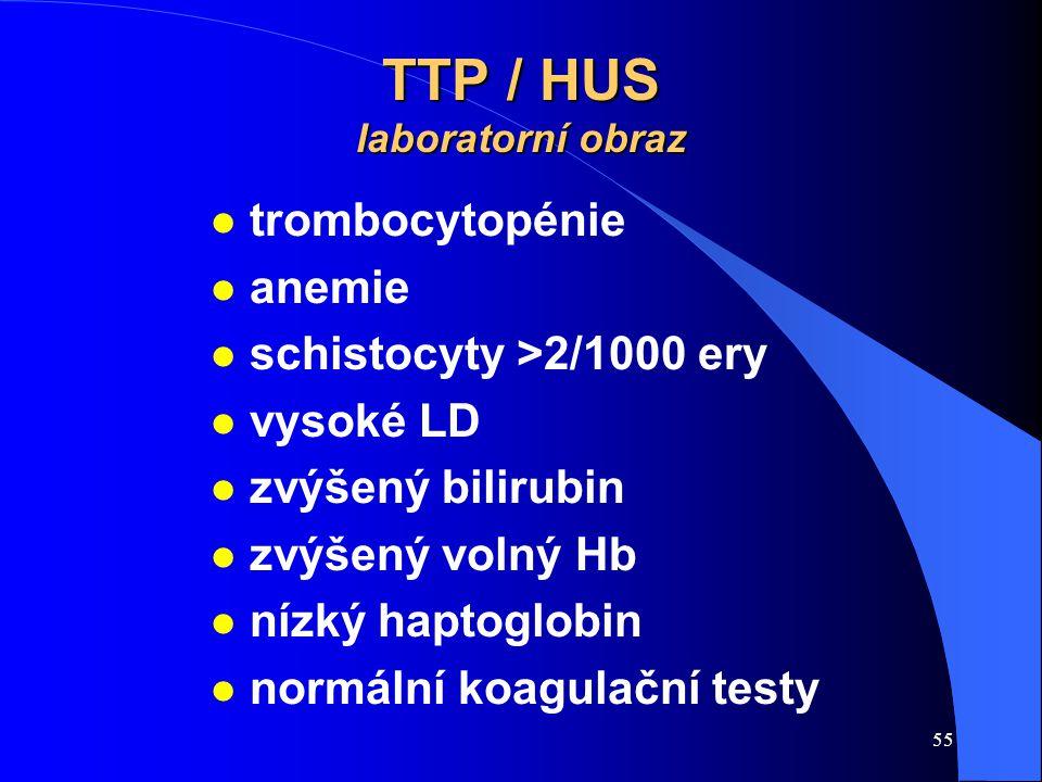 TTP / HUS laboratorní obraz