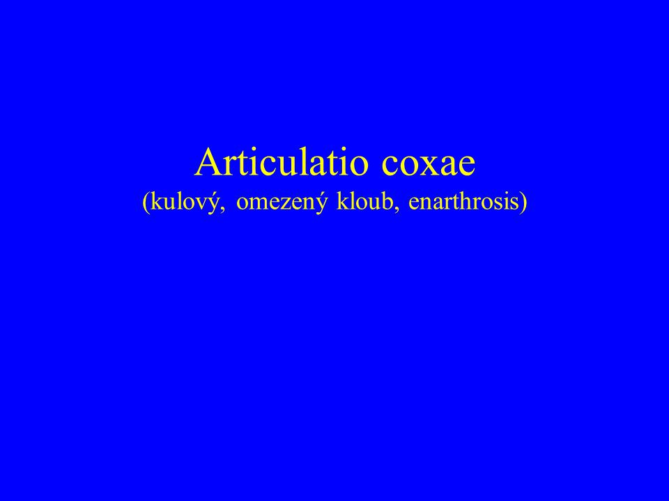 Articulatio coxae (kulový, omezený kloub, enarthrosis)