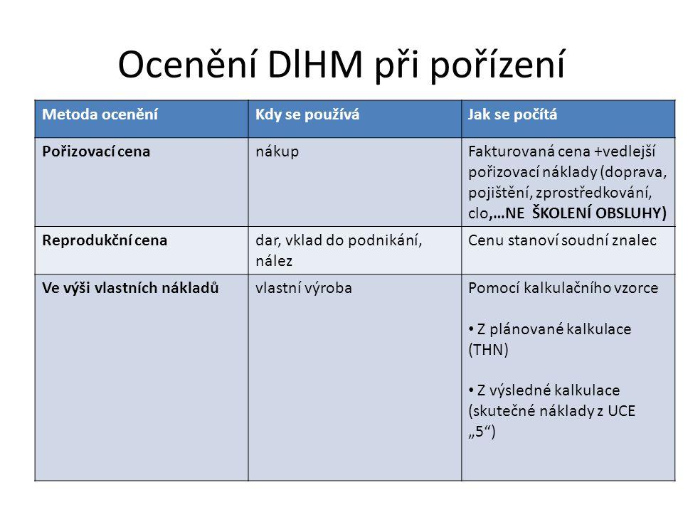 Ocenění DlHM při pořízení