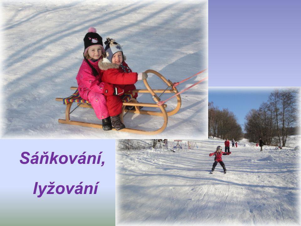 Sáňkování, lyžování