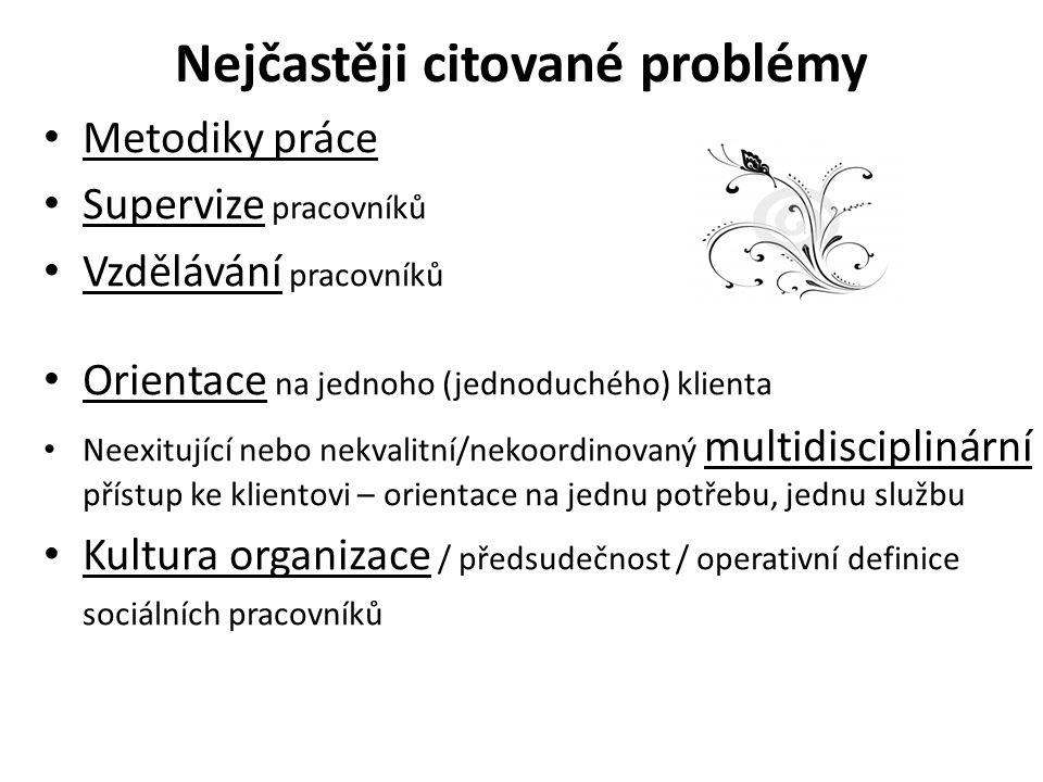 Nejčastěji citované problémy