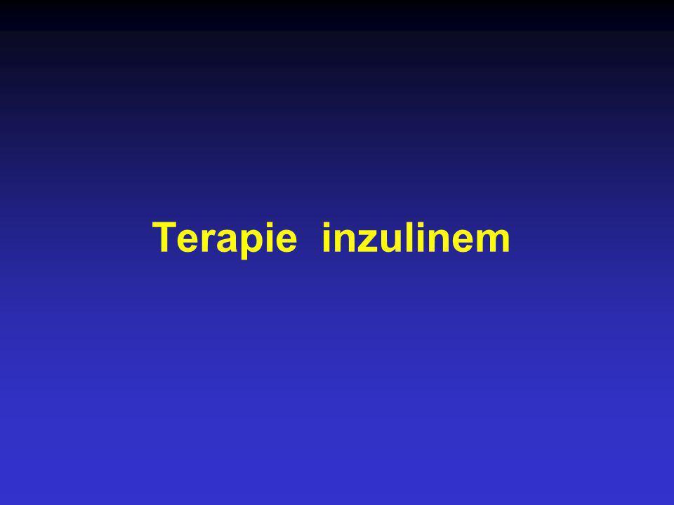 Terapie inzulinem