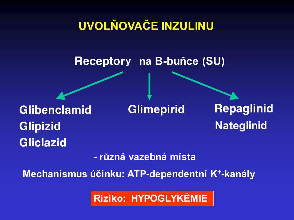 UVOLŇOVAČE INZULINU na B-buňce (SU) Nateglinid y - různá vazebná místa