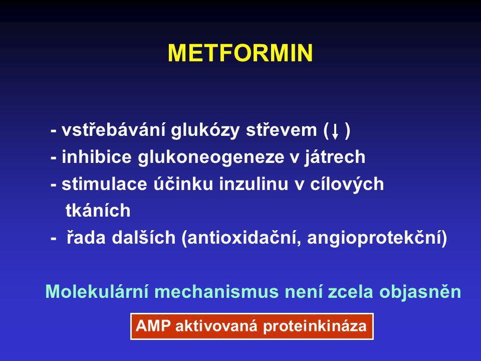 METFORMIN - vstřebávání glukózy střevem ( )