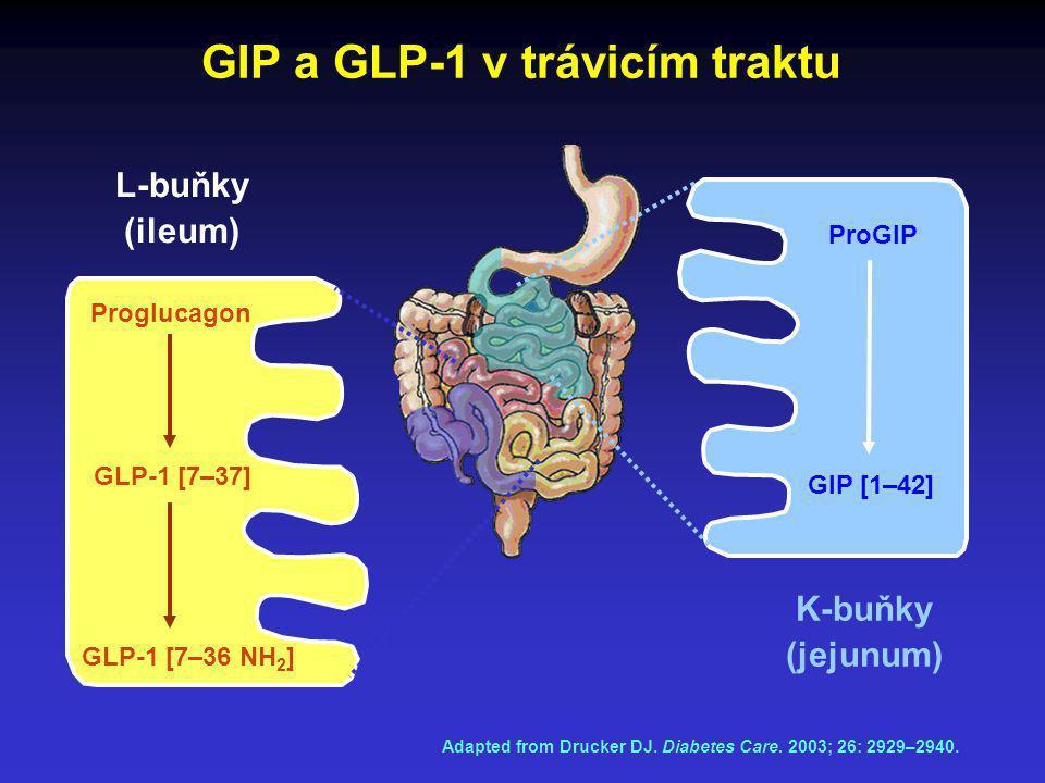 GIP a GLP-1 v trávicím traktu