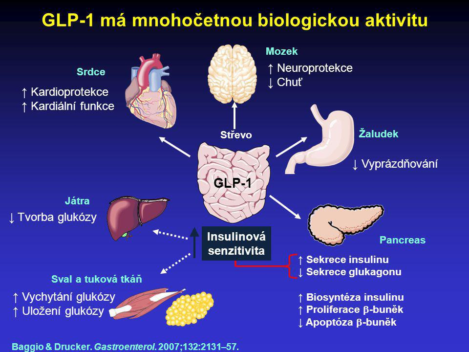 GLP-1 má mnohočetnou biologickou aktivitu