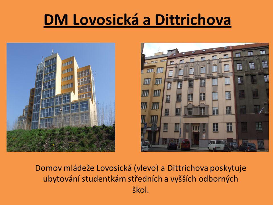 DM Lovosická a Dittrichova