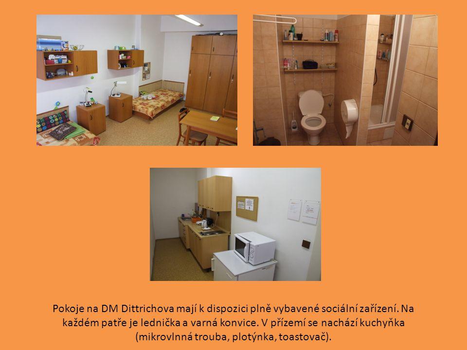 Pokoje na DM Dittrichova mají k dispozici plně vybavené sociální zařízení.