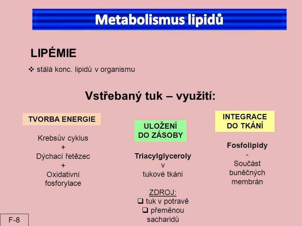 Metabolismus lipidů LIPÉMIE Vstřebaný tuk – využití:
