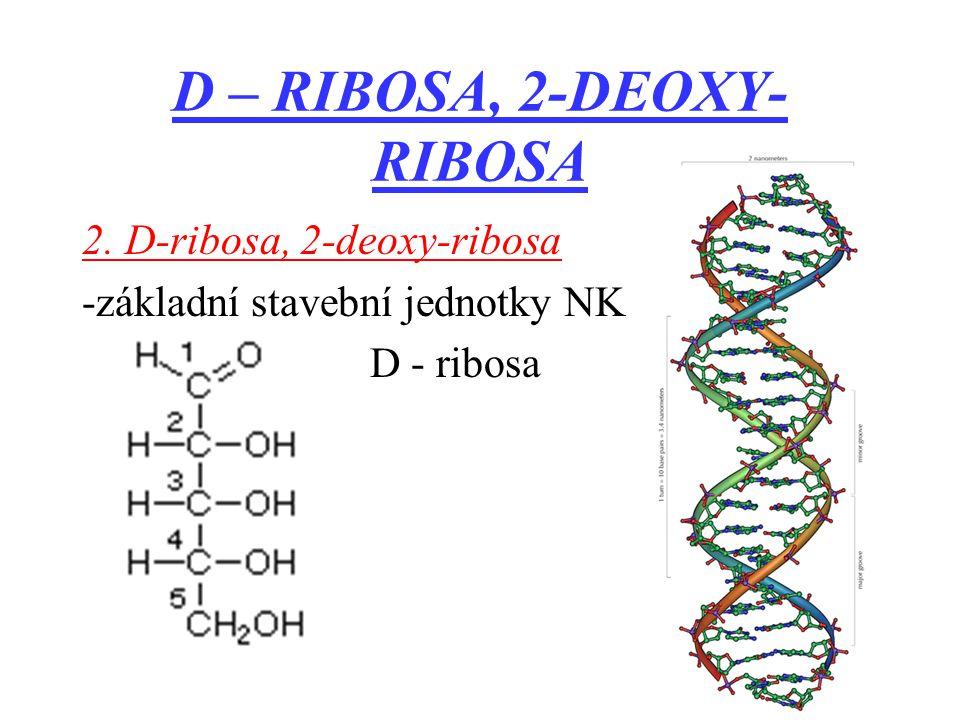 D – RIBOSA, 2-DEOXY-RIBOSA