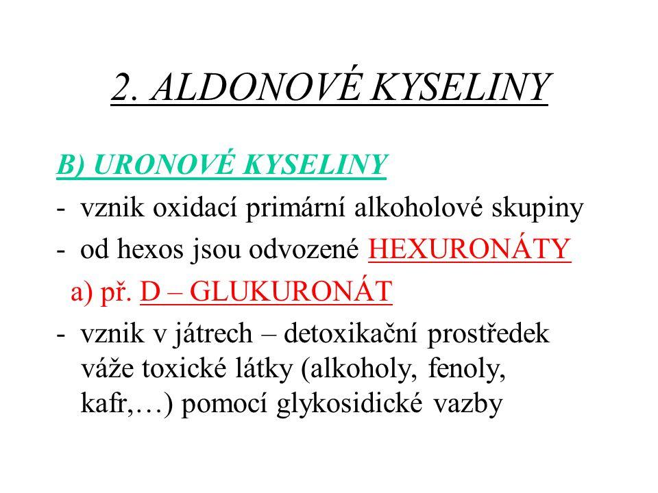 2. ALDONOVÉ KYSELINY B) URONOVÉ KYSELINY