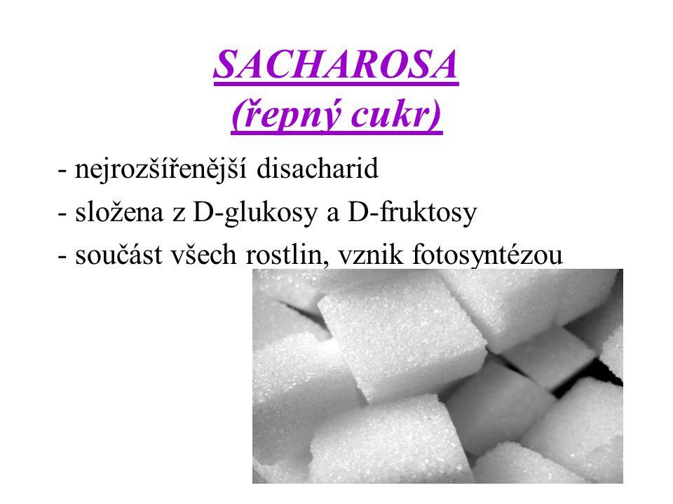 SACHAROSA (řepný cukr)