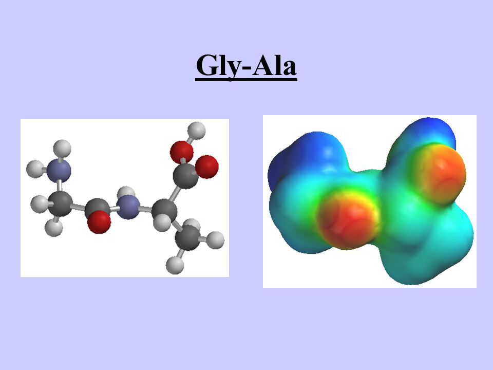 Gly-Ala