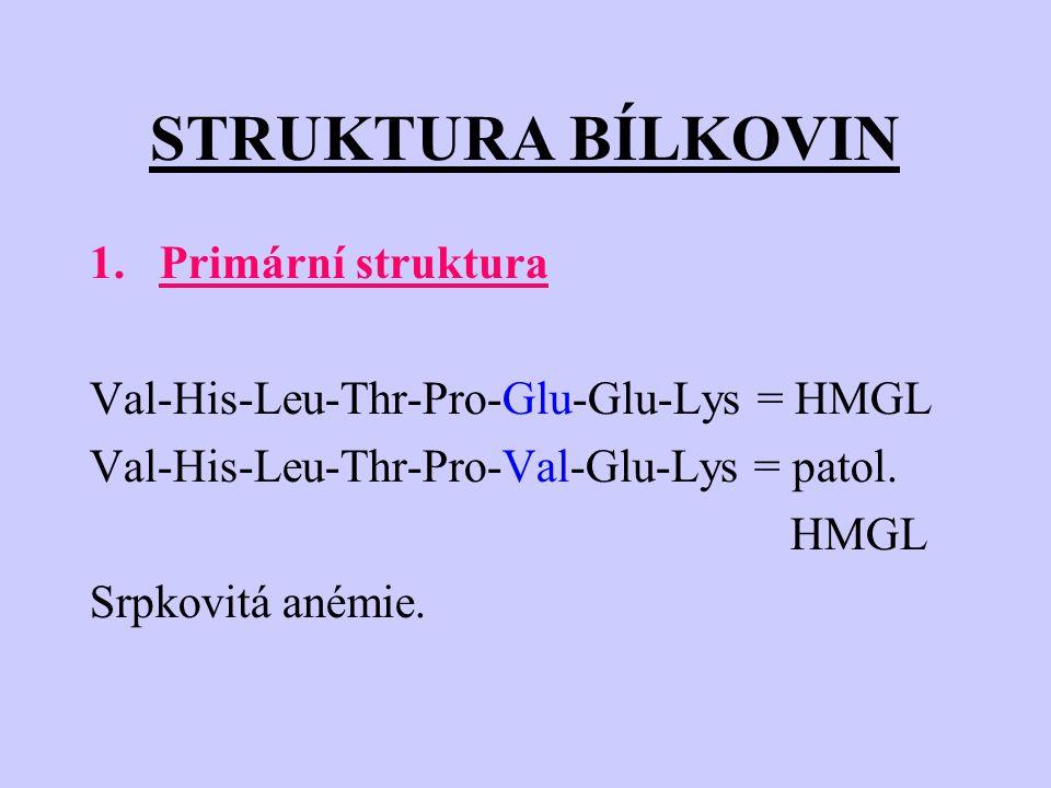 STRUKTURA BÍLKOVIN Primární struktura