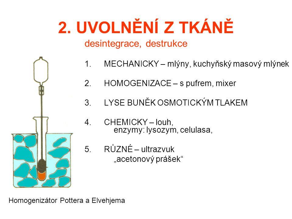 2. UVOLNĚNÍ Z TKÁNĚ desintegrace, destrukce