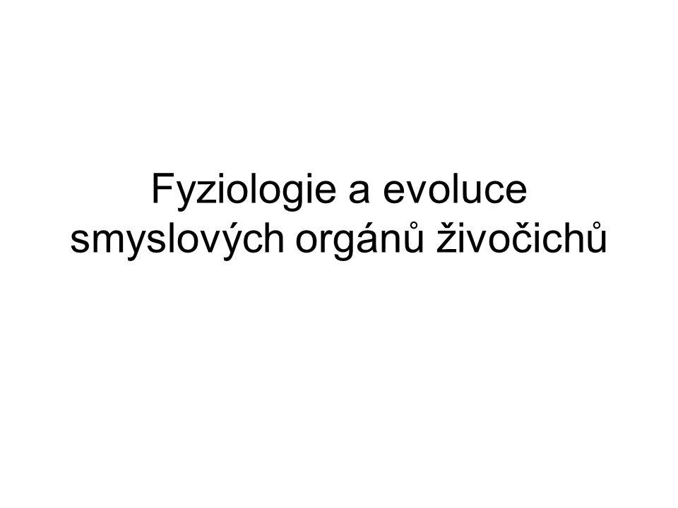 Fyziologie a evoluce smyslových orgánů živočichů