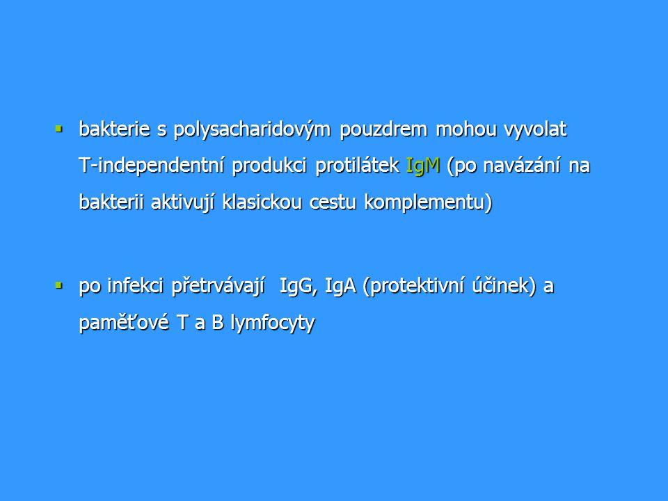 bakterie s polysacharidovým pouzdrem mohou vyvolat T-independentní produkci protilátek IgM (po navázání na bakterii aktivují klasickou cestu komplementu)