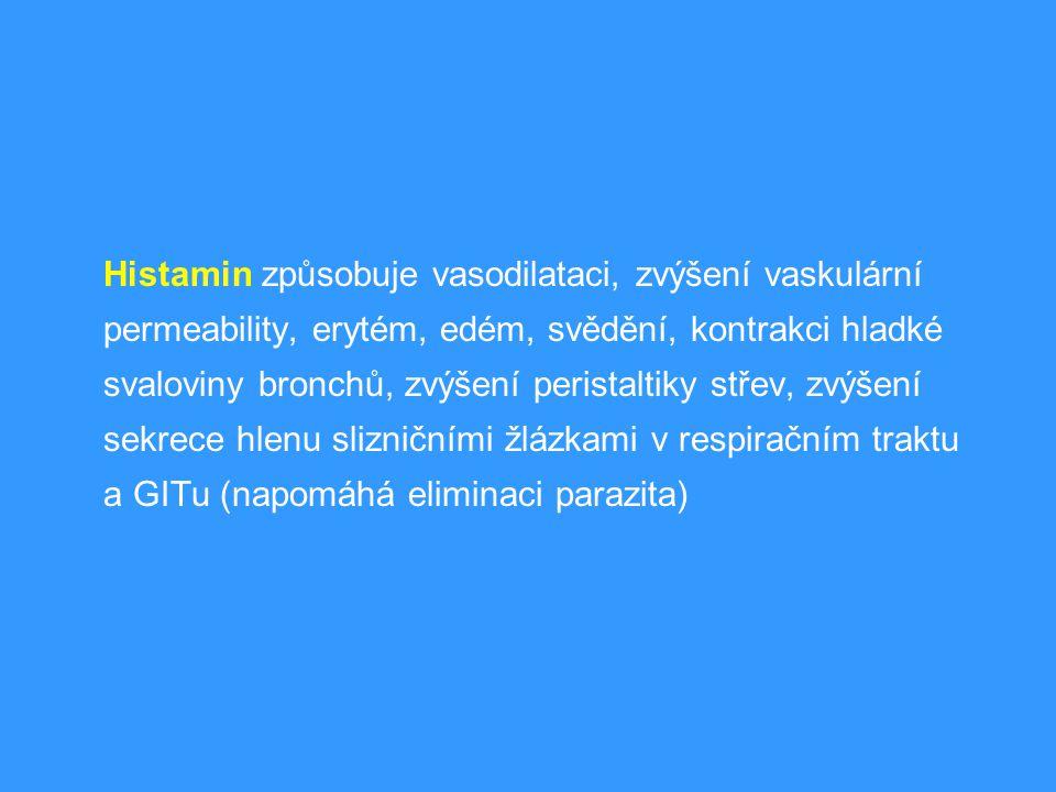 Histamin způsobuje vasodilataci, zvýšení vaskulární permeability, erytém, edém, svědění, kontrakci hladké svaloviny bronchů, zvýšení peristaltiky střev, zvýšení sekrece hlenu slizničními žlázkami v respiračním traktu a GITu (napomáhá eliminaci parazita)