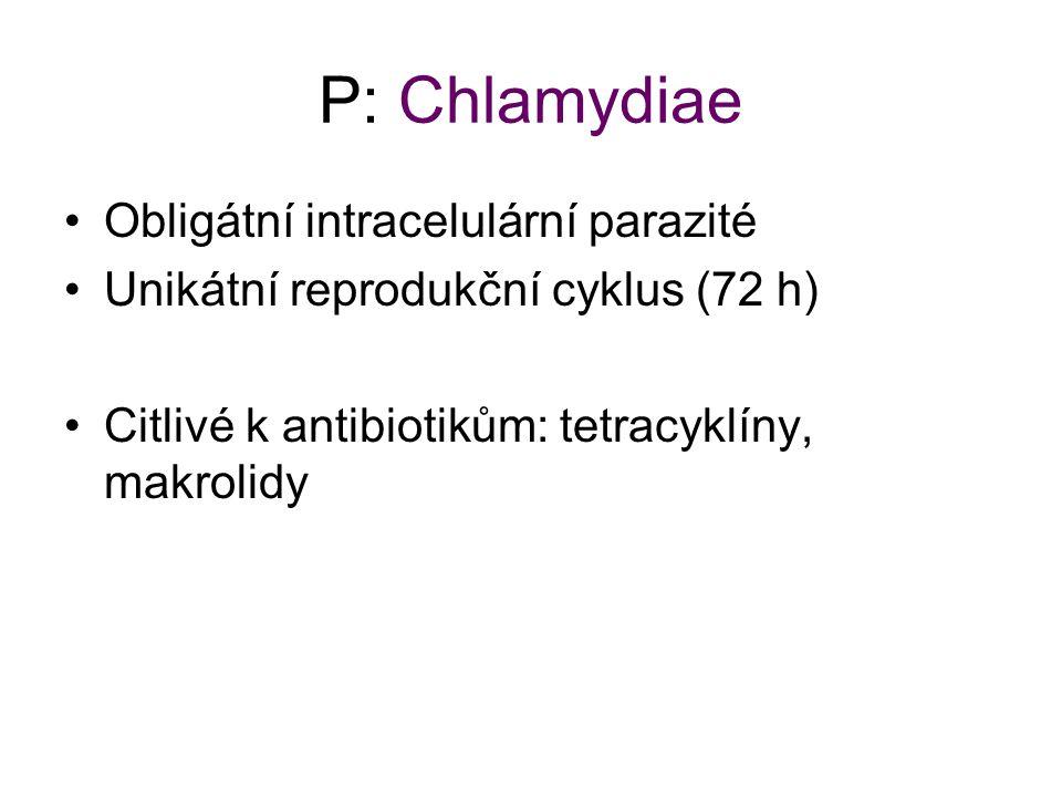 P: Chlamydiae Obligátní intracelulární parazité