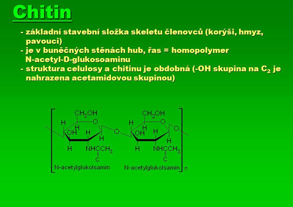 Chitin. - základní stavební složka skeletu členovců (korýši, hmyz,
