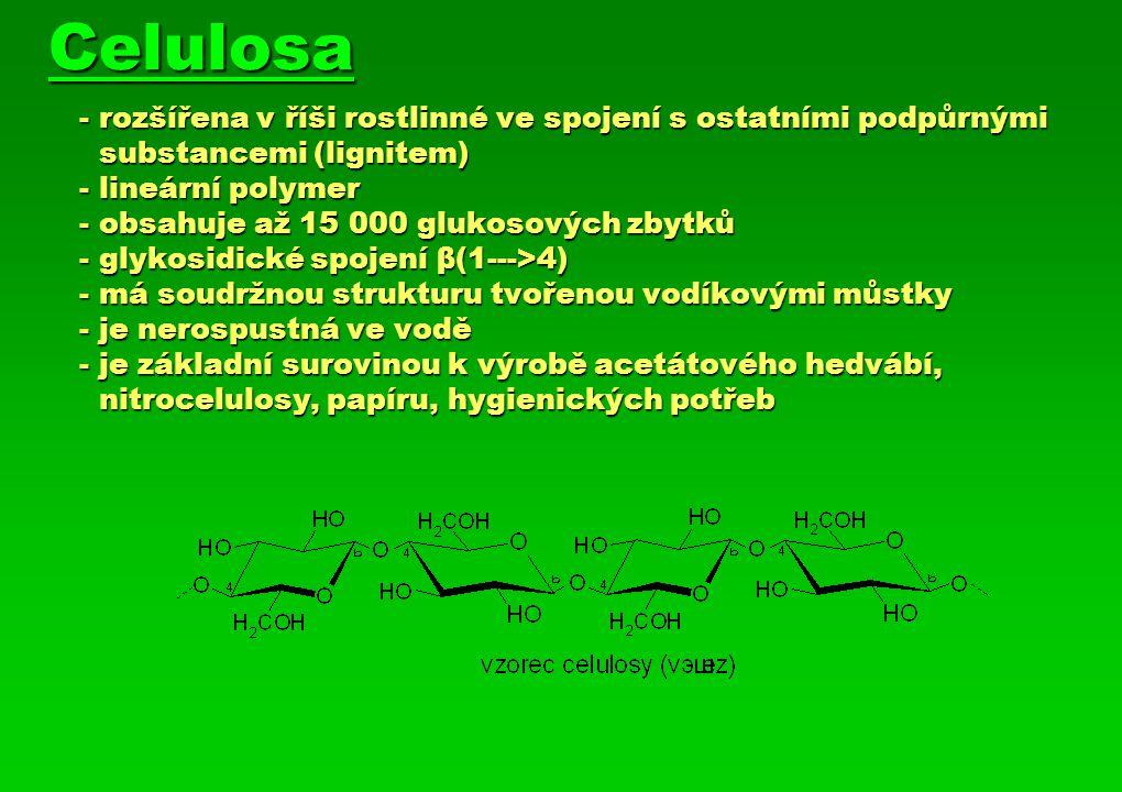 Celulosa - rozšířena v říši rostlinné ve spojení s ostatními podpůrnými substancemi (lignitem) - lineární polymer - obsahuje až 15 000 glukosových zbytků - glykosidické spojení β(1--->4) - má soudržnou strukturu tvořenou vodíkovými můstky - je nerospustná ve vodě - je základní surovinou k výrobě acetátového hedvábí, nitrocelulosy, papíru, hygienických potřeb