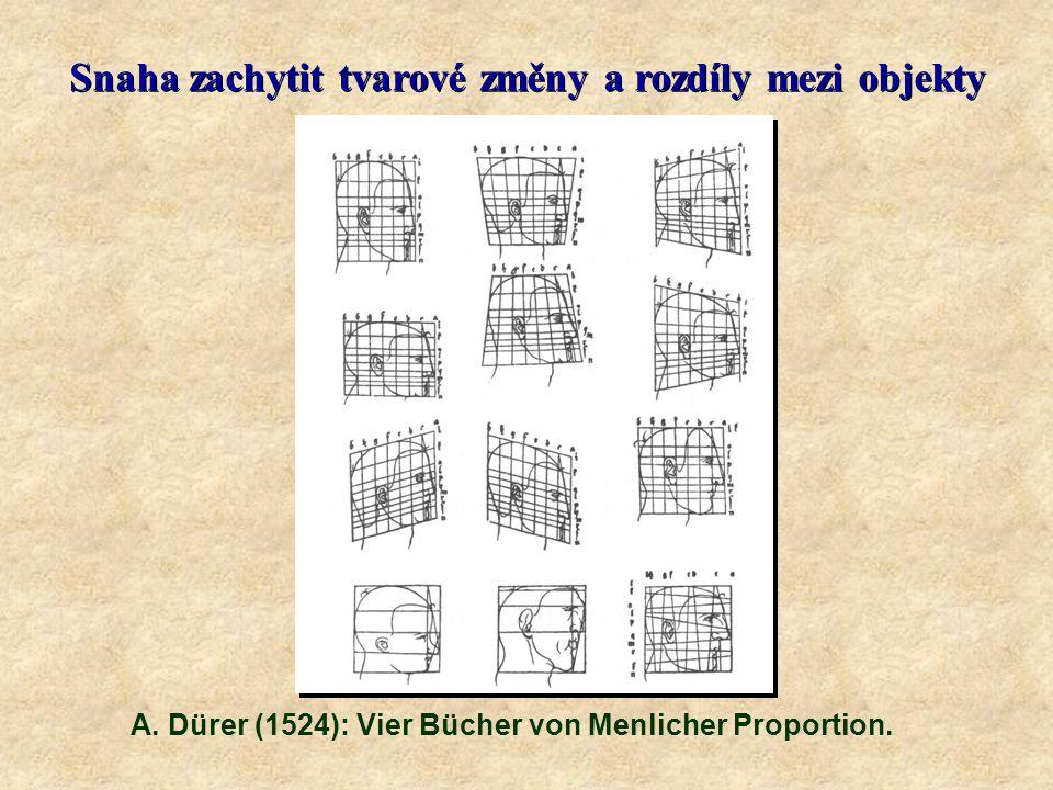 Snaha zachytit tvarové změny a rozdíly mezi objekty