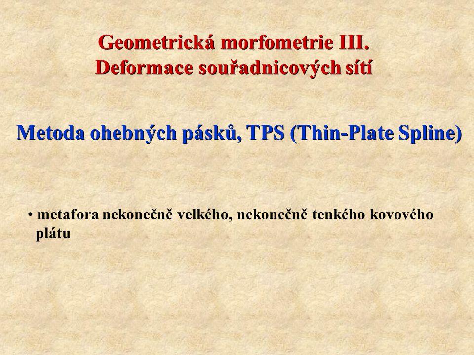 Geometrická morfometrie III. Deformace souřadnicových sítí