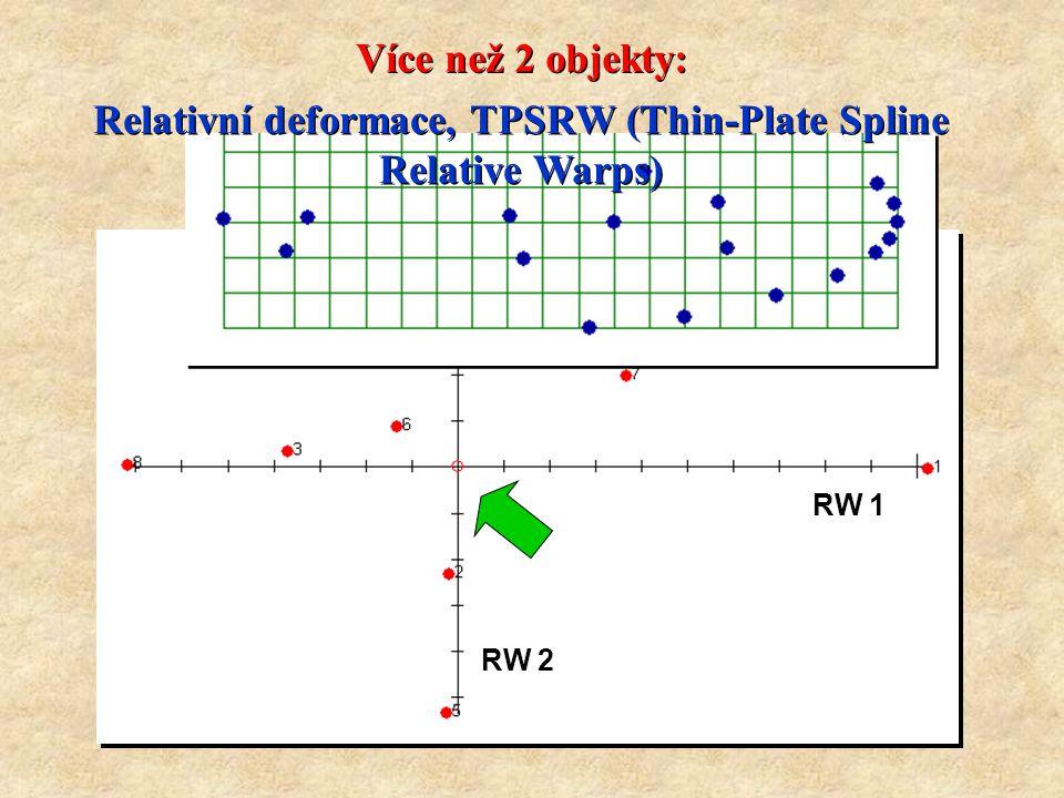 Relativní deformace, TPSRW (Thin-Plate Spline