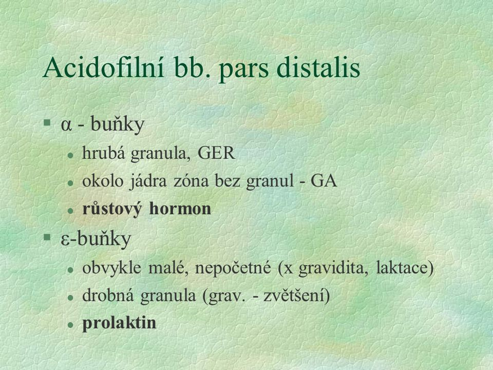 Acidofilní bb. pars distalis