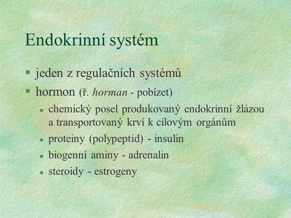 Endokrinní systém jeden z regulačních systémů