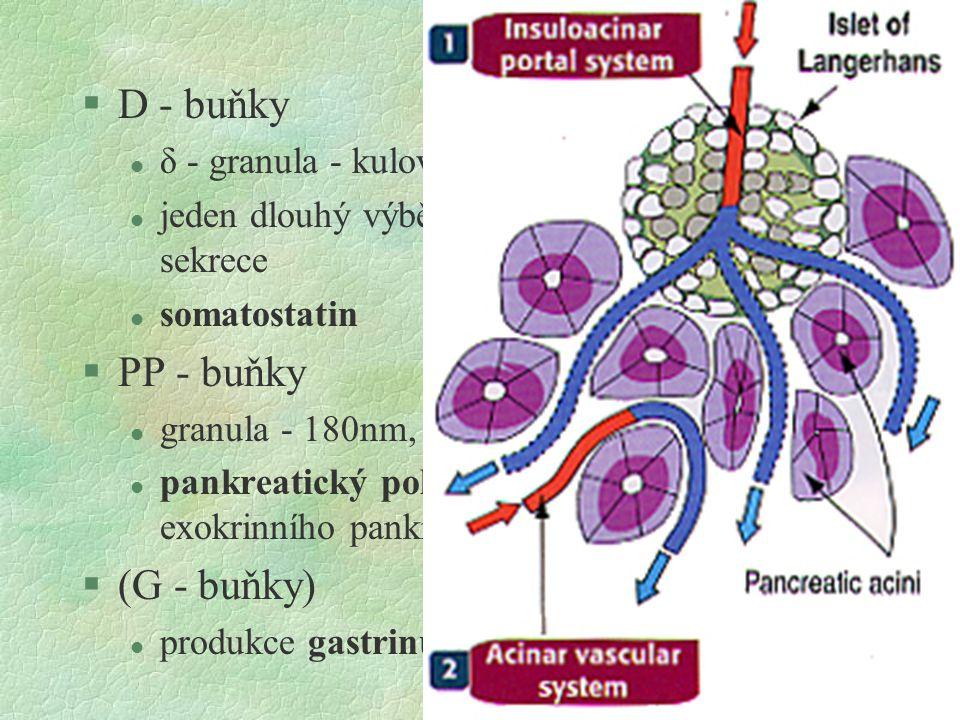 D - buňky PP - buňky (G - buňky)