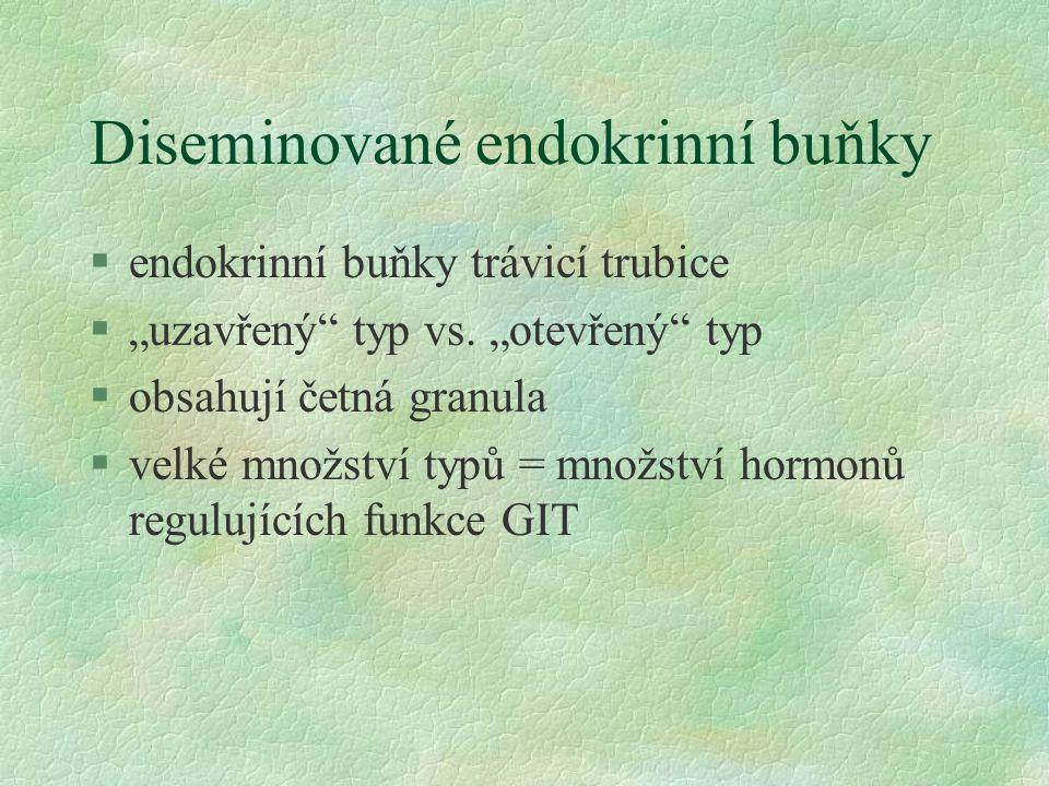 Diseminované endokrinní buňky