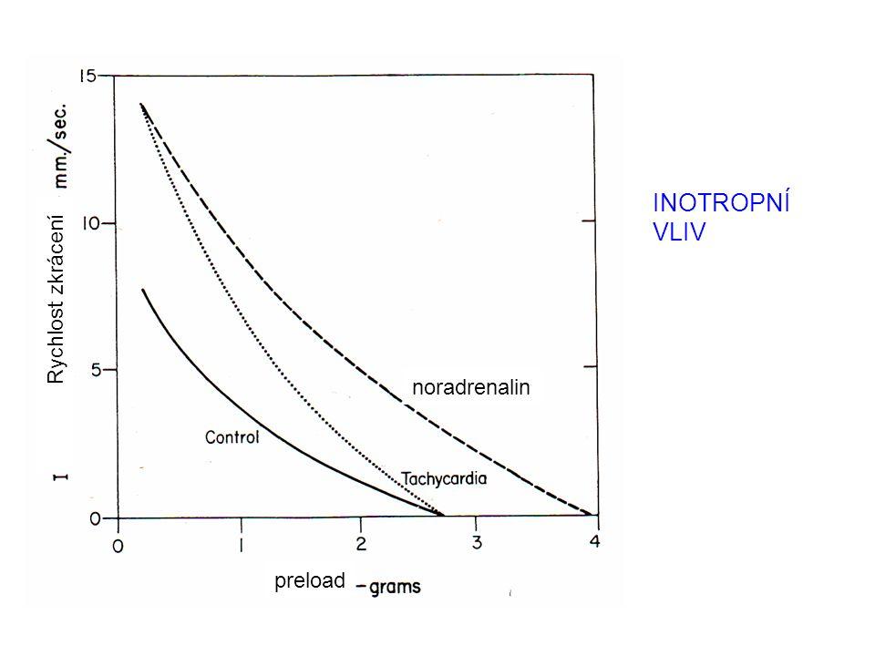 INOTROPNÍ VLIV Rychlost zkrácení noradrenalin preload
