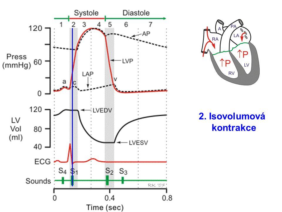 2. Isovolumová kontrakce