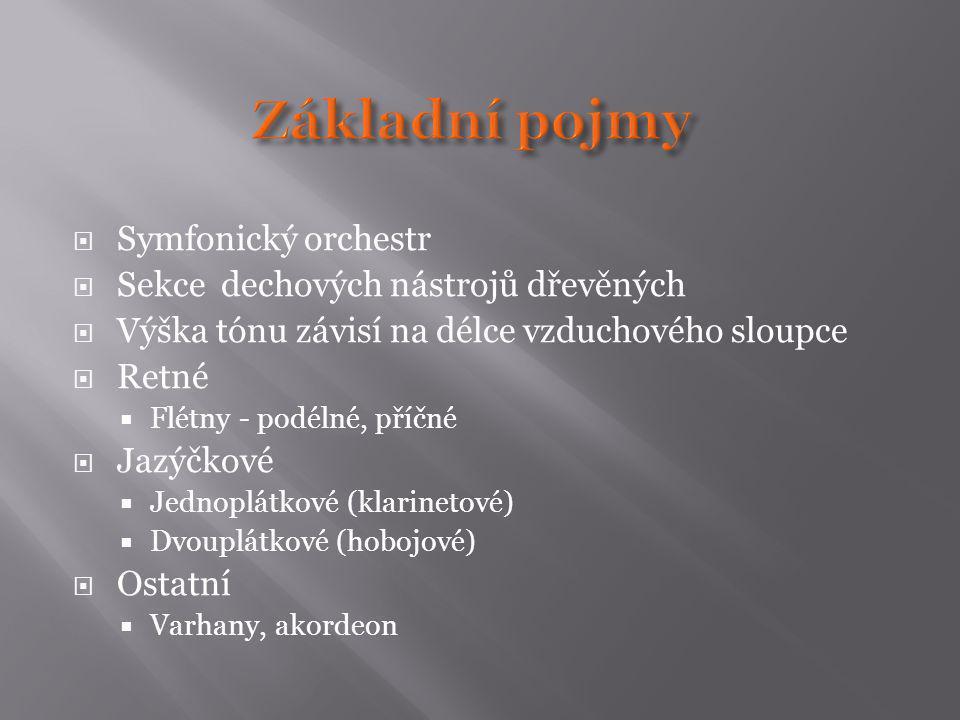 Základní pojmy Symfonický orchestr Sekce dechových nástrojů dřevěných