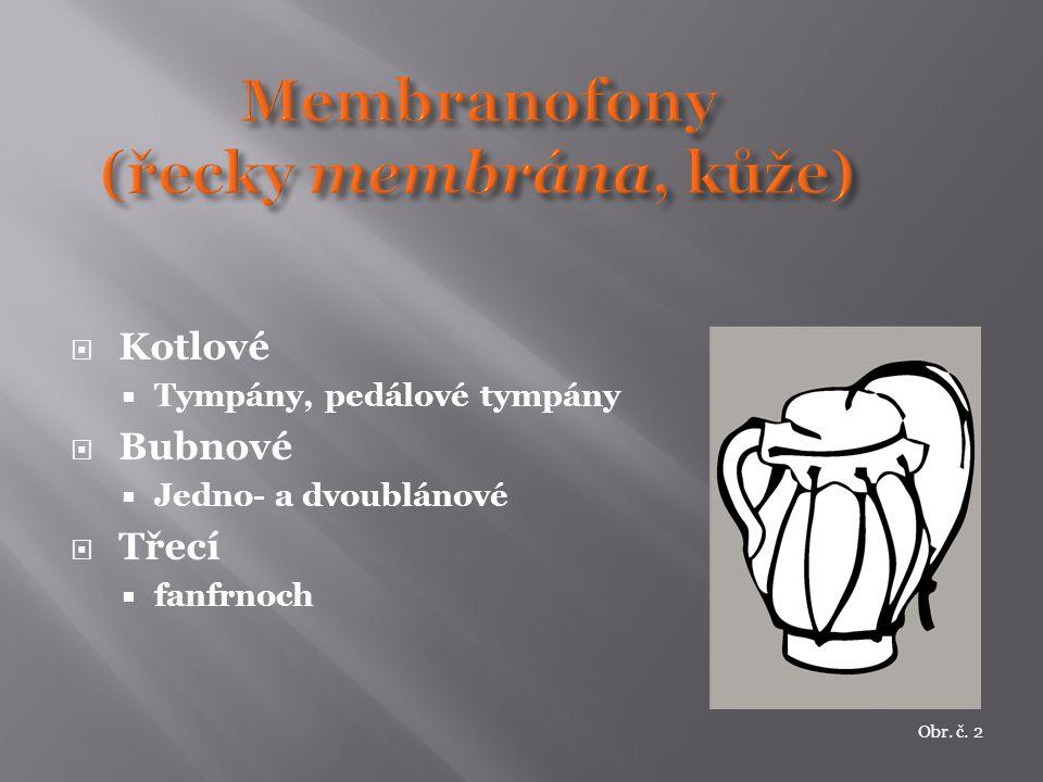Membranofony (řecky membrána, kůže)