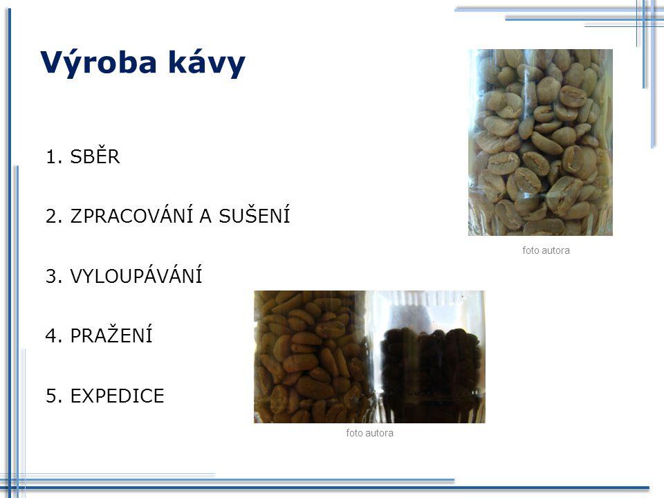 Výroba kávy SBĚR ZPRACOVÁNÍ A SUŠENÍ VYLOUPÁVÁNÍ PRAŽENÍ EXPEDICE