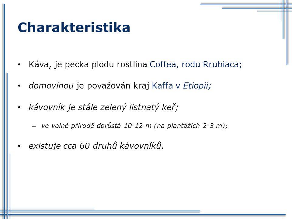 Charakteristika Káva, je pecka plodu rostlina Coffea, rodu Rrubiaca;