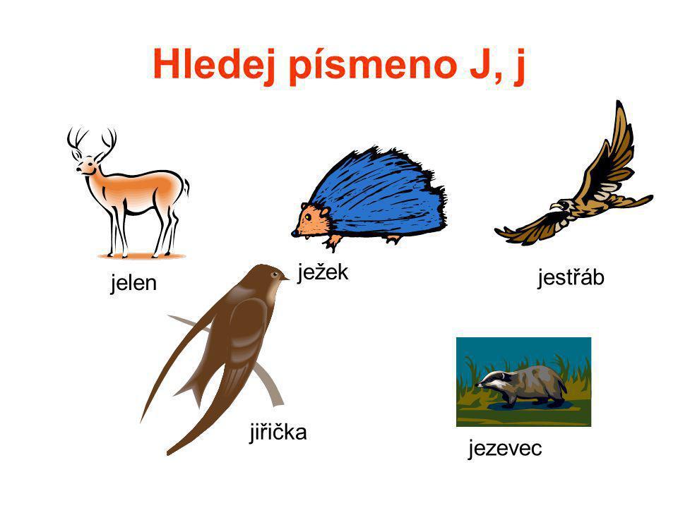 Hledej písmeno J, j ježek jestřáb jelen jiřička jezevec