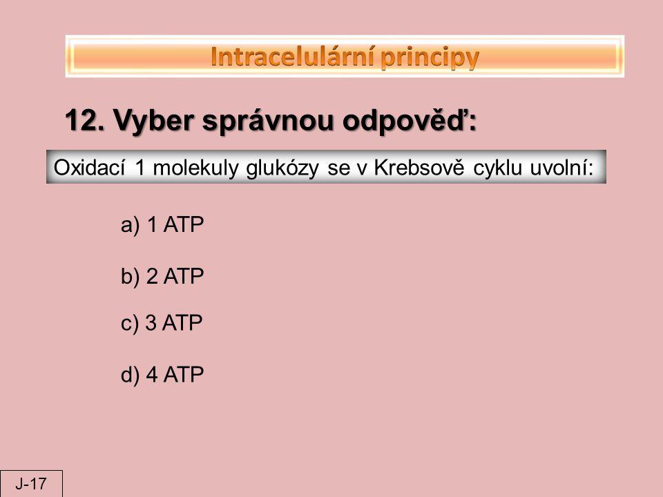 Intracelulární principy