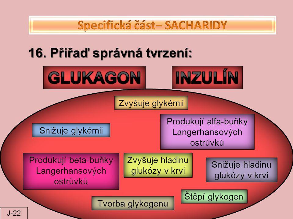 Specifická část– SACHARIDY