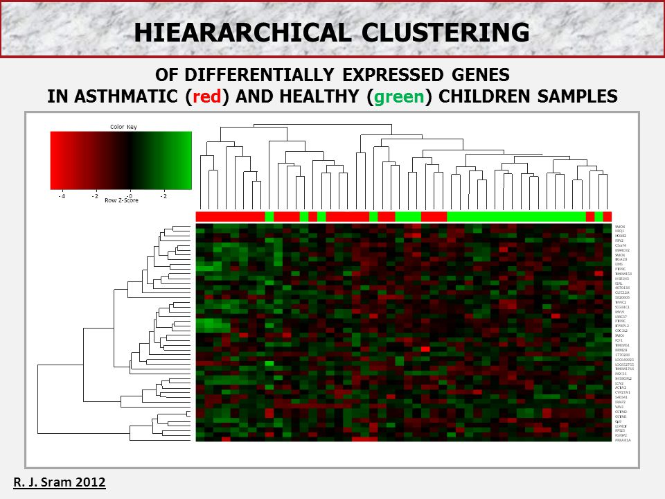 HIEARARCHICAL CLUSTERING