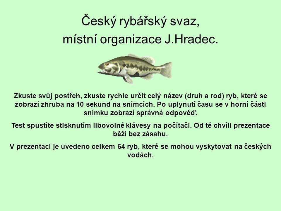 Český rybářský svaz, místní organizace J.Hradec.