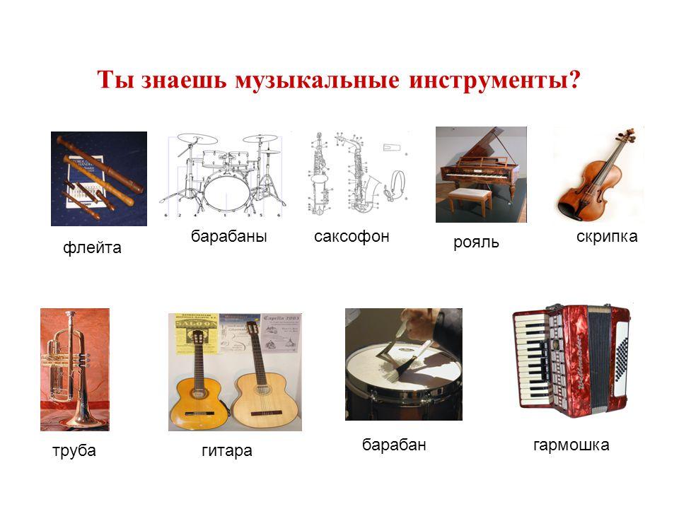Ты знаешь музыкальные инструменты